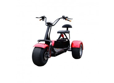 Electric Scooter Citycoco трехколесный